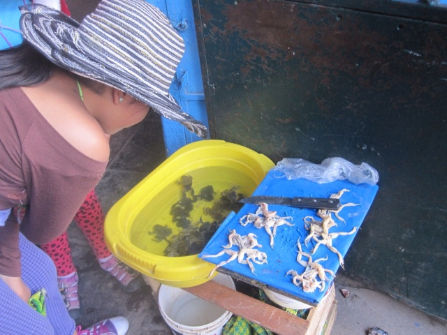 Some frogs legs for sale at the market
